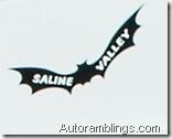 saline bat
